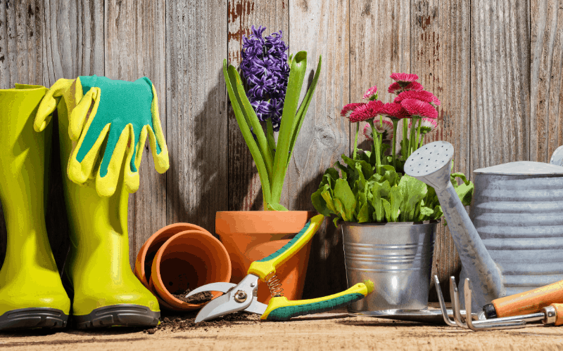 Top 10 Gardening Gifts For Christmas
