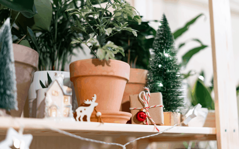 cool gardening gifts for Christmas